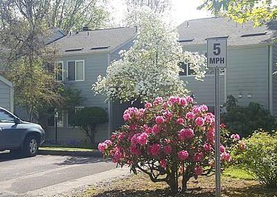 Portland, OR 97229