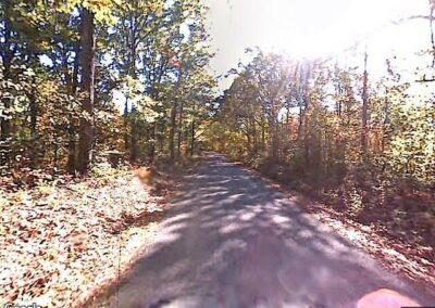 Beech Bluff, TN 38313
